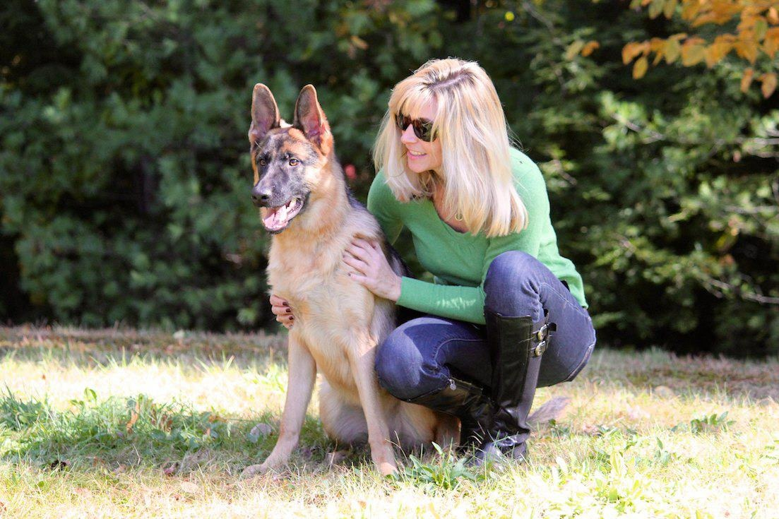 Home - Protection Dogs